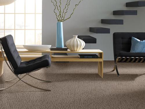 Room Ideas: Carpet